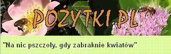 Pożytki.pl